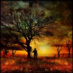 The Harvester by Stroody