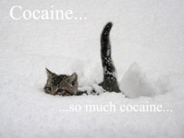 Cocaine... by asakura-yumi