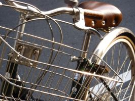 Bicycle of Shining Armour by melanie12271994