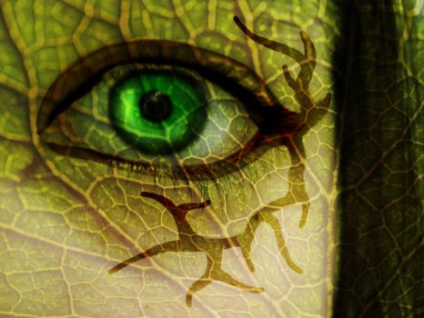 Eye of Nature by TheLoneTree