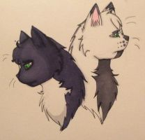 Two of the same by Tess-Is-Epic
