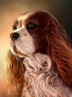 King Charles Spaniel by giselleukardi