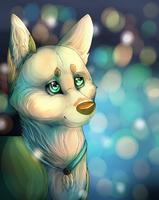 Collab with Liabordercollie - Embers by Afna2ooo
