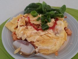 The Ugliest Omurice ever....... by Roses-and-Feathers