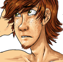 Hiccup WIP by Bonka-chan