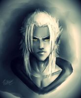 Xemnas _ The Superior by Roxaoleen