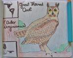 Great Horned Owl - Animal of July 2015 by MoonyMina