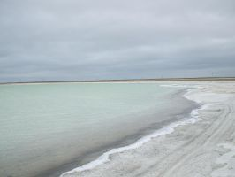 Salt landscape 2 by BerryBlu