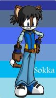 Sokka.....THE CAT by gamergrl