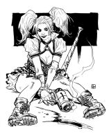 Harley Quinn from Batman Arkham Knight by deankotz