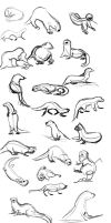 Otter Gestures by Temiree