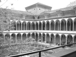 University of Milan B and W by kingnilo