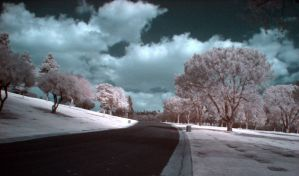 The sad and lonely road by Raydog