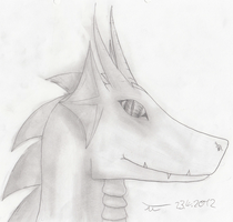 Dragon head: traditional, with soft shading by Leopardenschweif