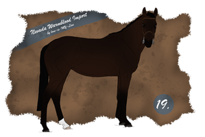 Nevada Import 19 by BRls-love-is-MY-Live