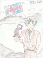 It's Iceland and Mr Puffin! by WalkerP