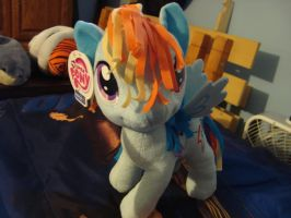 Rainbow Dash Plushy by spidyphan2