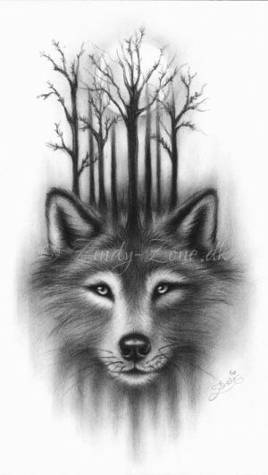 Forest Wolf by Zindy