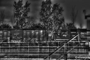 Graffiti Train by chriskronen