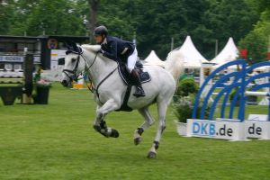 Show Jumping Stock 003 by LuDa-Stock