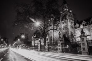 The NHM. by llemonthyme