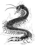 Tremorworks: Centipede bw by rachaelm5