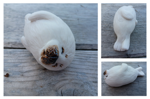 Baby Harp Seal by CrowMaiden