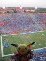 Chula says GO GATORS by pikabellechu