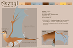 Avenyl - Temporary Ref Sheet by Blue-Dragons-Fan
