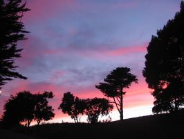May San Francisco sunset 2 by venusflesh