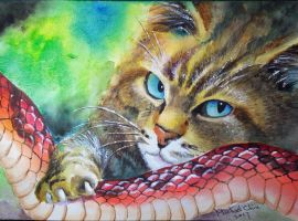 Cat and snake by Michael-Chiu
