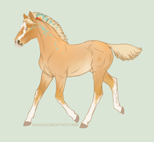 Foal #9837 by NorthEast-Stables