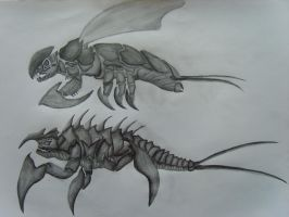 Creature Design: Adult and Larvae by GTURTLE123