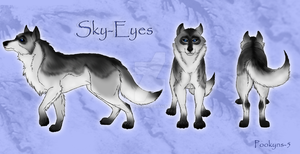 Sky Eyes profile by pookyhorse