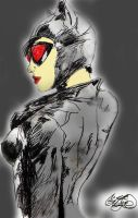 Catwoman Arkham City by ClownPrinceOfCrime69