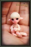 PIKO NEW 5 cm MICRO BJD 1 by DreamHighStudio