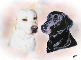 Barney and Pepper by Kath-13