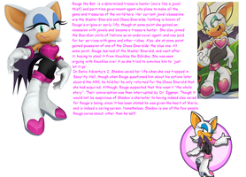 Sonic DATA Files: Rouge by thesoniczone11