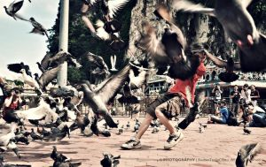 Batu Caves - Birds by reubenteo