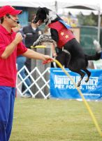 Jump Roping Dog by AnxietyPatient