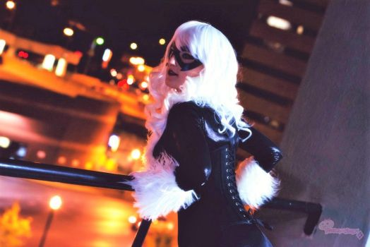 Black Cat: Out and About by HarleyTheSirenxoxo