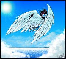 . . . by Shark-Bites