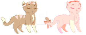 neapolitan flower crown cat adopts { 1 LEFT } by strawberrymeopin
