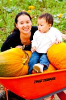 Pumpkin Patch 4 by BertLePhoto