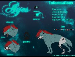 Ayes Reference 2013 by Paivelimon