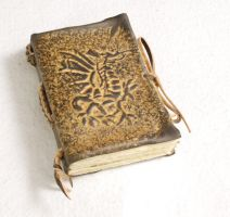 Small Dragon Journal by gildbookbinders