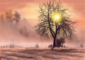 Free Winter Sunset Background by SweetLittleVampire