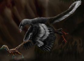 Archaeopteryx litographica by Durbed
