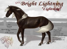 GFS Bright Lightning by FlareAndIcicle