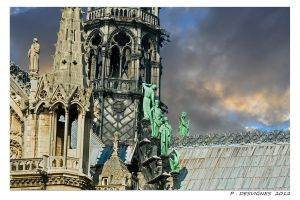 roofs of Notre Dame de Paris by bracketting94
